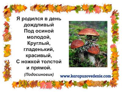 загадки про грибы подосиновики для детей с ответами в картинках