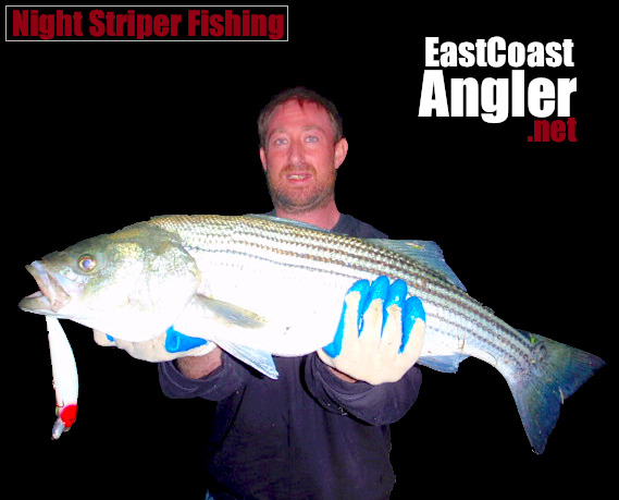 Striped bass fishing at night for Striper fishing at night