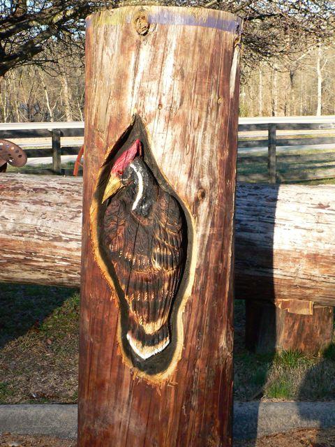 Wood Sculptures