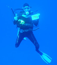 Cheryl's 200th dive