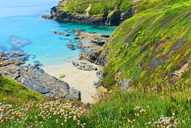 july piskies cove near prussia cove a place full of
