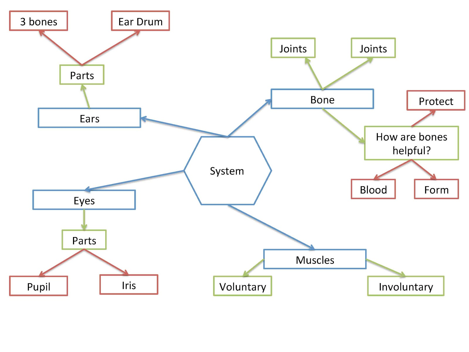 Mind Map Diagram Examples Mind Business U Example Mind