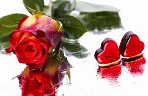 Rose...Mawar...Keindahan...Kelembutan