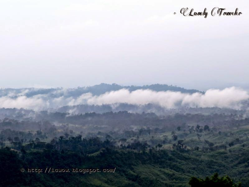 a journey to sajek Sajek, the hilly beauty of bangladesh is famous for its mind blowing beauty of hills and cloud though it is situated in rangamati, it is better to go there through khagrachari for easy transport you will be thrilled at every moment of the 25 hrs journey by chander gari from khagrachari to sajek, and don't forget to visit alutila cave, risung falls and hazachara falls as a bi-product, all .