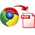 Chrome for iOS PDF