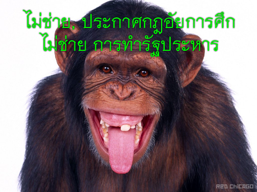 ไม่ช่าย,
