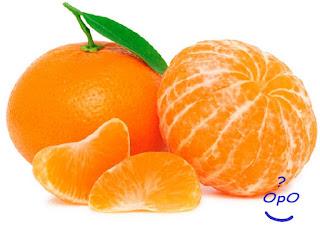 Opo - Manfaat buah jeruk untuk kesehatan
