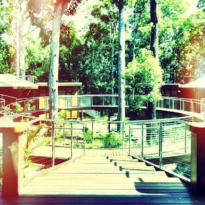 Resort planning, resort brand, target market