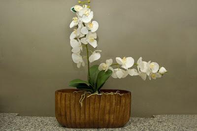 17 Flores para a sua casa...!