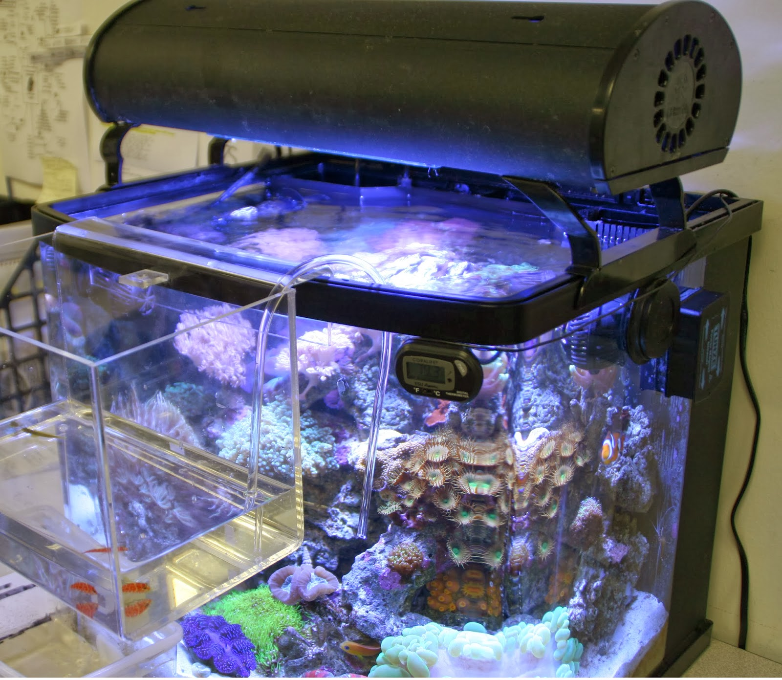 Hack your tank ways to modify your all in one aquarium for Fish tank top cover