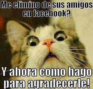 Imagenes graciosas para compartir Facebook - imagenes chistosas para compartir por facebook