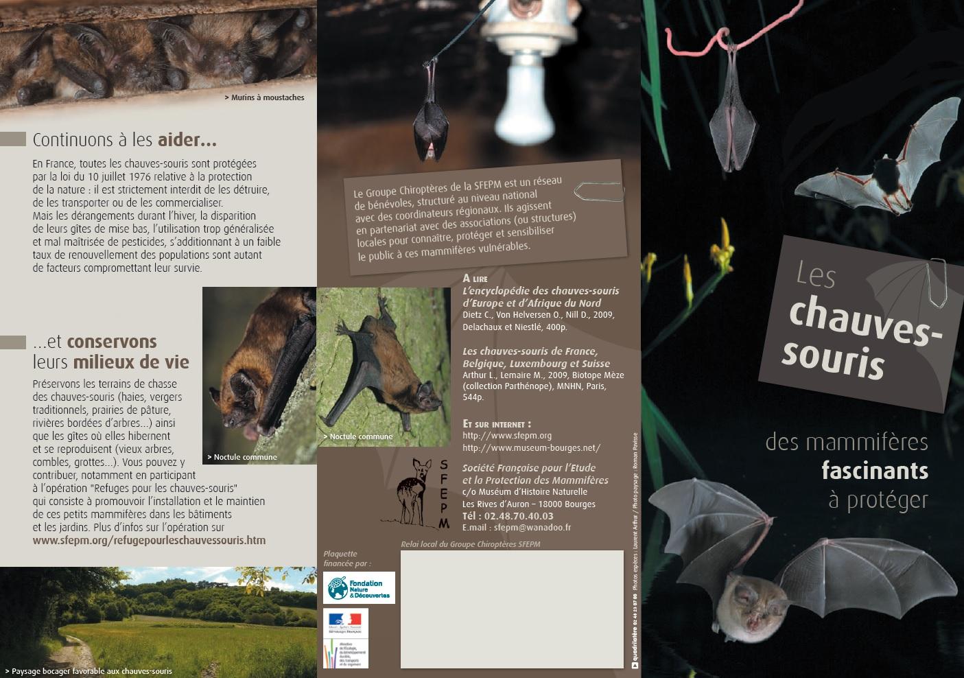 Gestation Chauve Souris breuillet nature: les chauves-souris