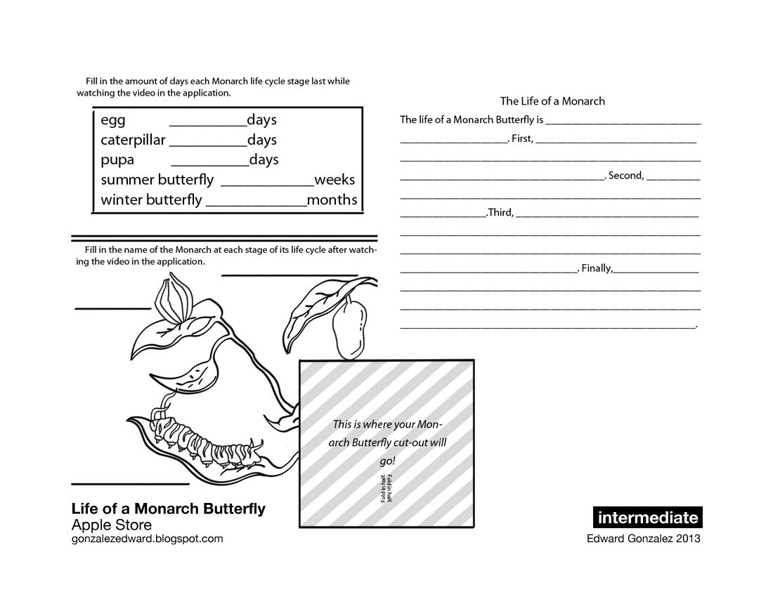 life cycle worksheets third grade life best free printable worksheets. Black Bedroom Furniture Sets. Home Design Ideas