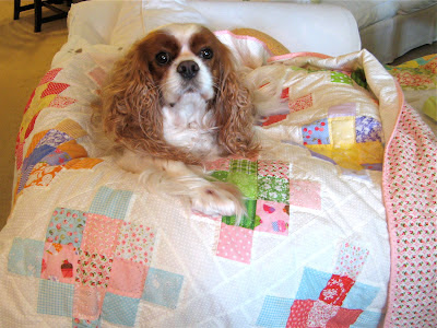 Emma the Sew Fabulous Quilt Shop mascot on quilt