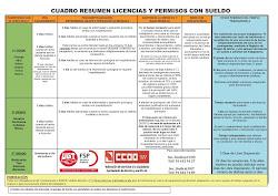 RESUMEN  LICENCIAS Y PERMISOS CON SUELDO