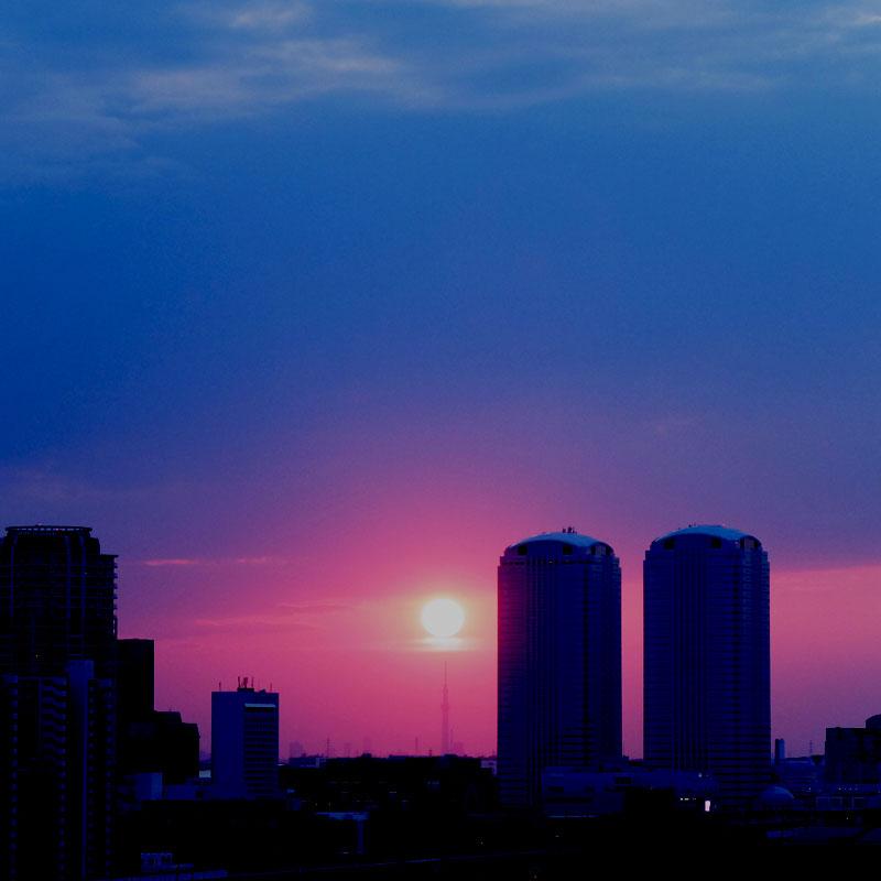 スカイツリーと夕日の写真