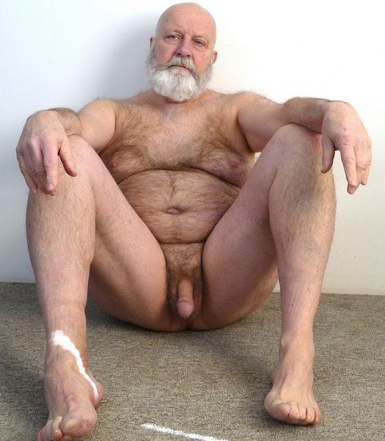 SilverBeard_2 Chubby Daddy Bear Silver Daddy