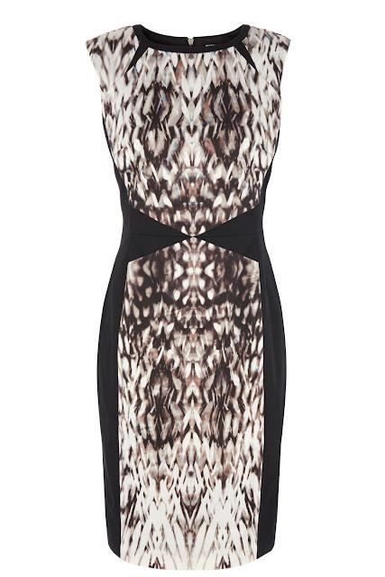 blurred dress