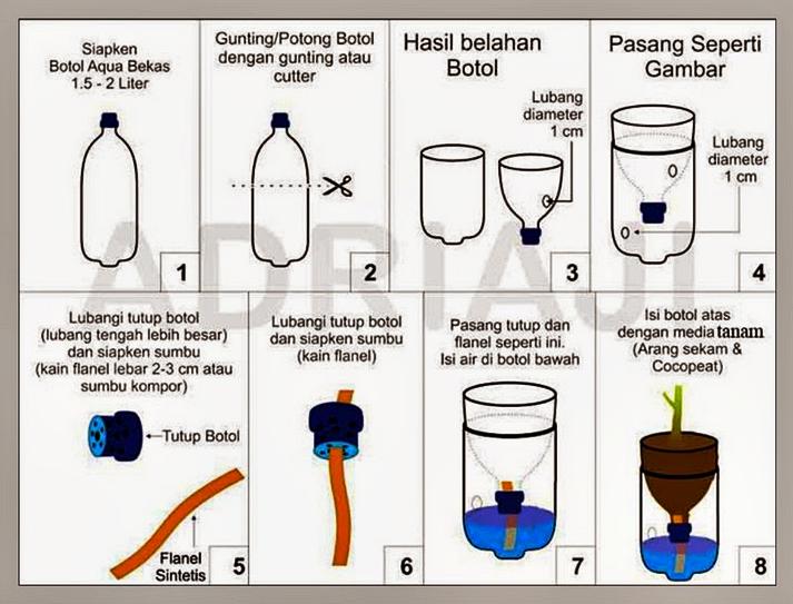 Tanaman Hidroponik Solusi Mudah Bercocok Tanam Di Rumah