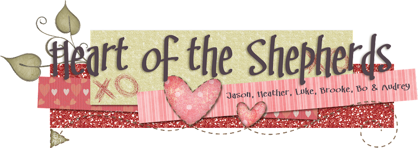 Heart of the Shepherds