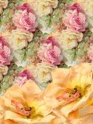 rosas vintage imagenes fondos flores