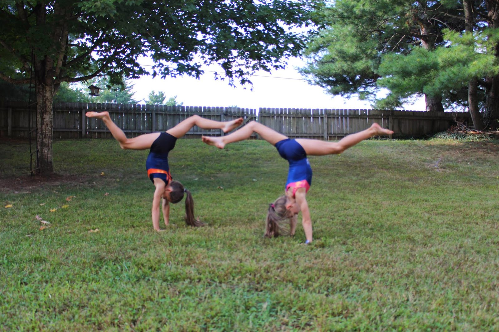 Traveling Handstands: How Did You Spend National Gymnastics Day?