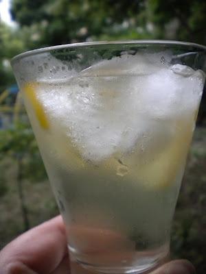 martini bitter