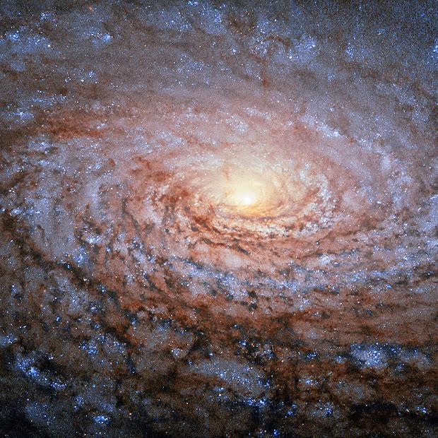 Spiral Galaxy M63