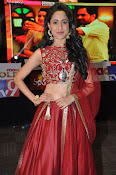 Pragya Jaiswal at Kanchem audio launch-thumbnail-15