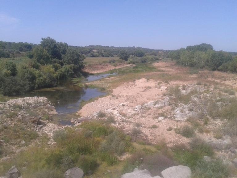 Ribeira da Raia - Zona Fluvial