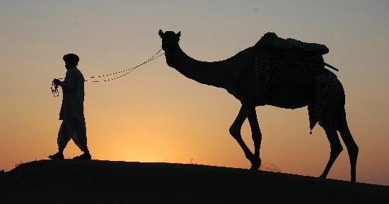 http://4.bp.blogspot.com/-jcJPWRWSXU0/VmurQAPsdeI/AAAAAAAAA9w/4WVLx96lRQ4/w1200-h630-p-nu/jamba-sunset-camel.jpg