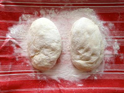 bread dough rising kneading flour williams sonoma towel