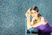 Vedhika glamorous photos gallery-thumbnail-14