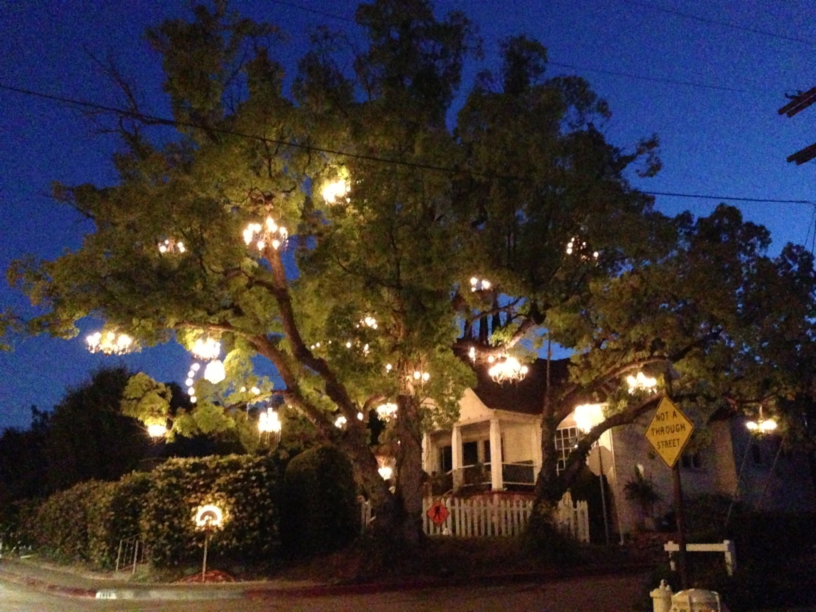 Lovely Photos Of Chandelier Tree - Furniture Designs - Furniture ...