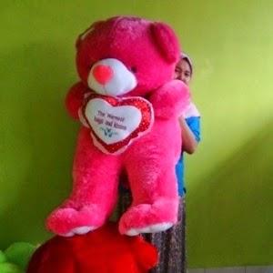 boneka beruang warna pink