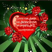 """""""Para ser feliz en el amor uno debe saber"""