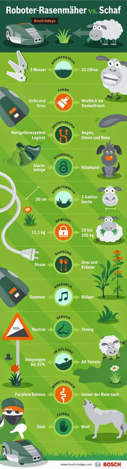 Der Weg zum schönen Rasen...
