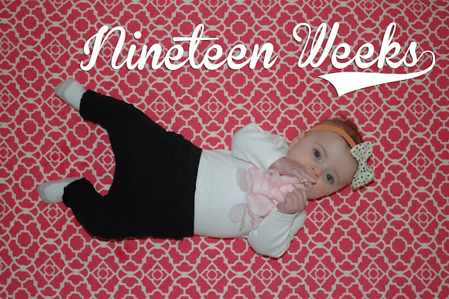 http://meetthegs.blogspot.com/2013/11/lilly-anne-19-weeks.html