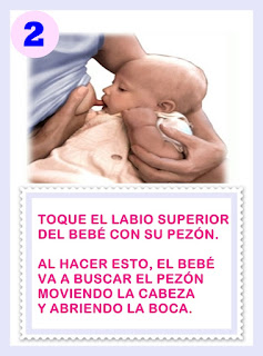 COMO PRENDER A PECHO AL BEBE http://corresaltaycuidate.blogspot.com