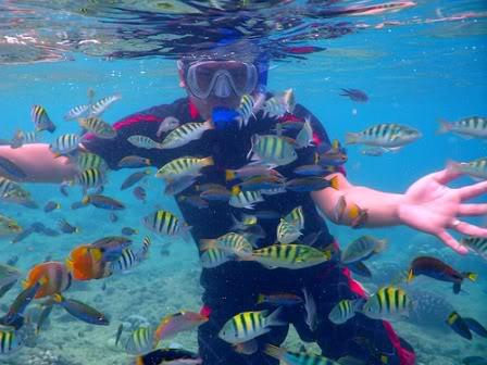 balicasag-snorkeling - Balicasag Islands' Beauty - Philippine Photo Gallery