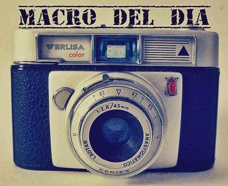 http://nikavintage.blogspot.com.es/