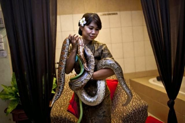An employee demonstrates a spa massage with reflexology pythons Center in Bali October 27, 2013, in Jakarta, Indonesia.
