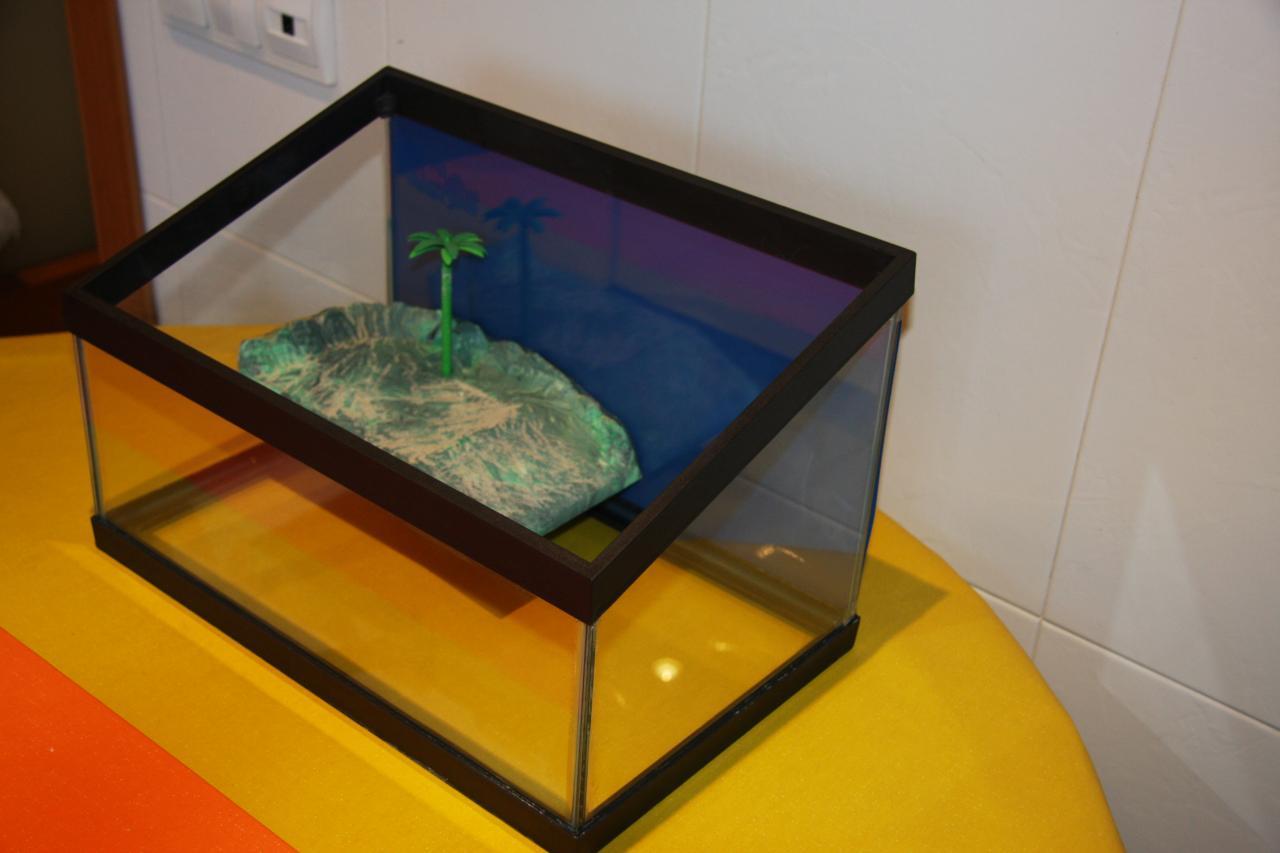 Ayuda para las tortugas acuarios para tortugas de agua for Acuario tortugas