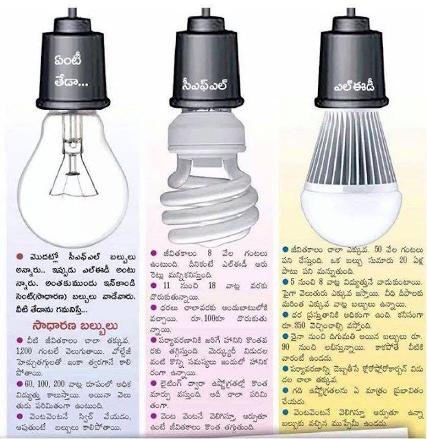 CFL vs LED Bulbs