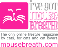 Visit Mousebreath