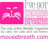 Visit Mousebreath