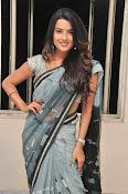 Jyothi seth sizzling saree photos-thumbnail-15