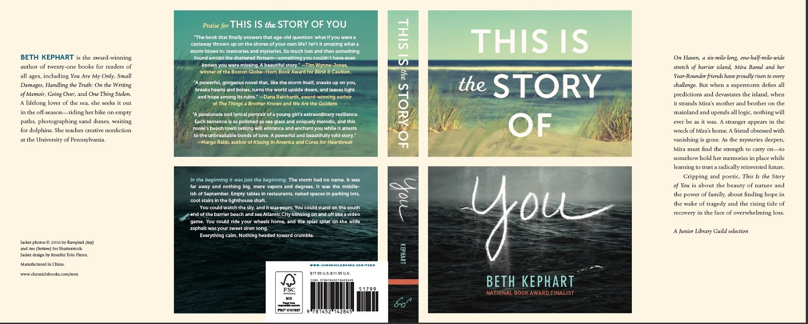 Beth kephart books this is the story of you a 2016 bank street best book of the year buycottarizona