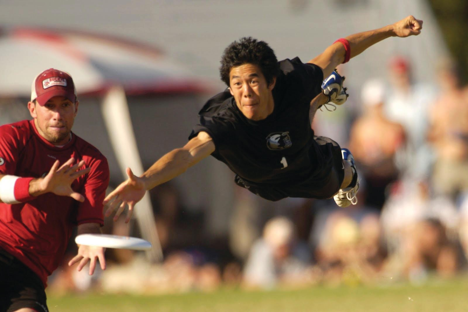 Http Galleryhip Com Ultimate Frisbee Layout Gif Html