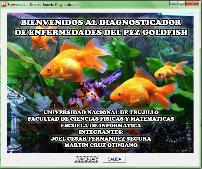 Sistema experto diagnosticador de enfermedades de peces for Enfermedades de peces goldfish